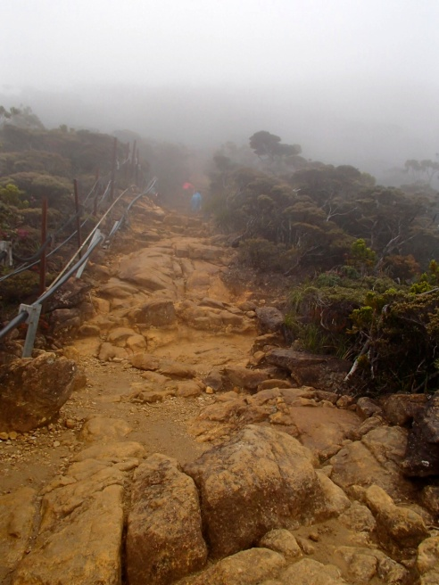 The path changes to muddy rocks.